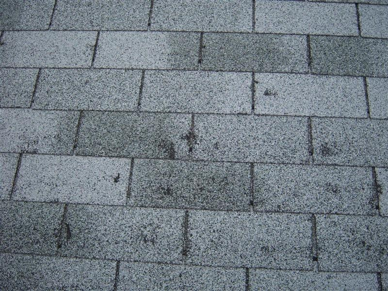 hail damage on roof